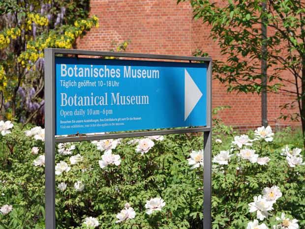 BotanischerGartenBerlin19